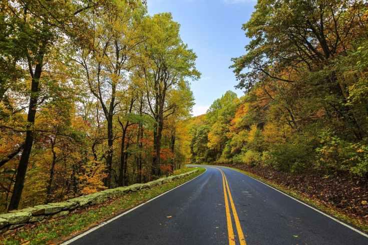 Fall autumn road